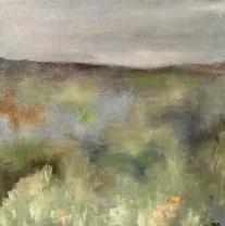 b Serene Meadow